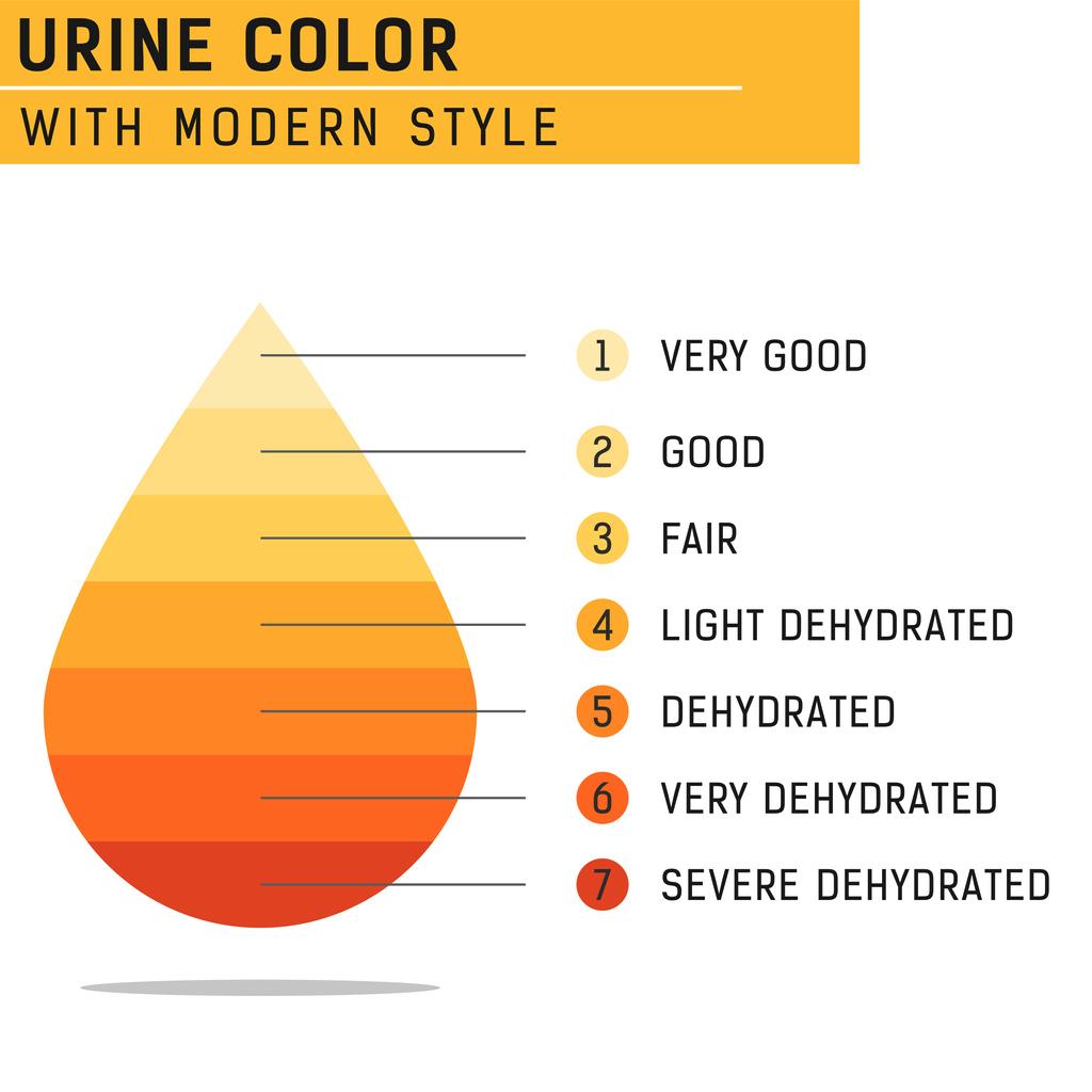 Pee Color Chart