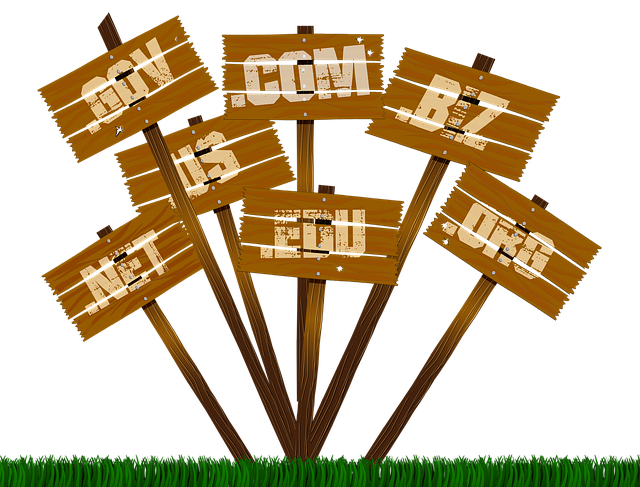 List of domain names