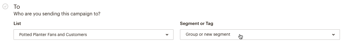 Select Group or New Segment from the drop-down