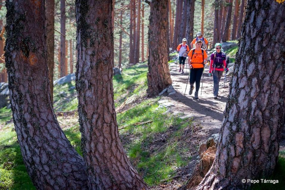 La imagen puede contener: una o varias personas, personas de pie, árbol, planta, exterior y naturaleza