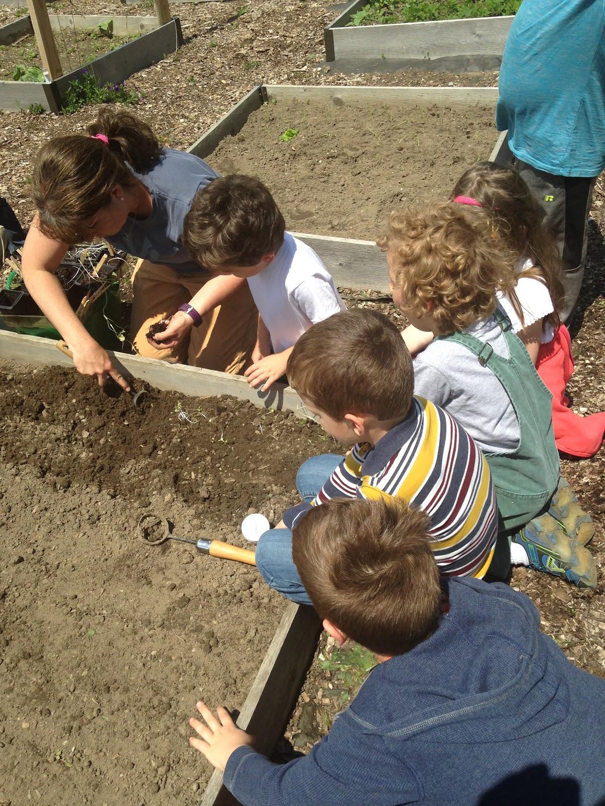Planting E.jpeg