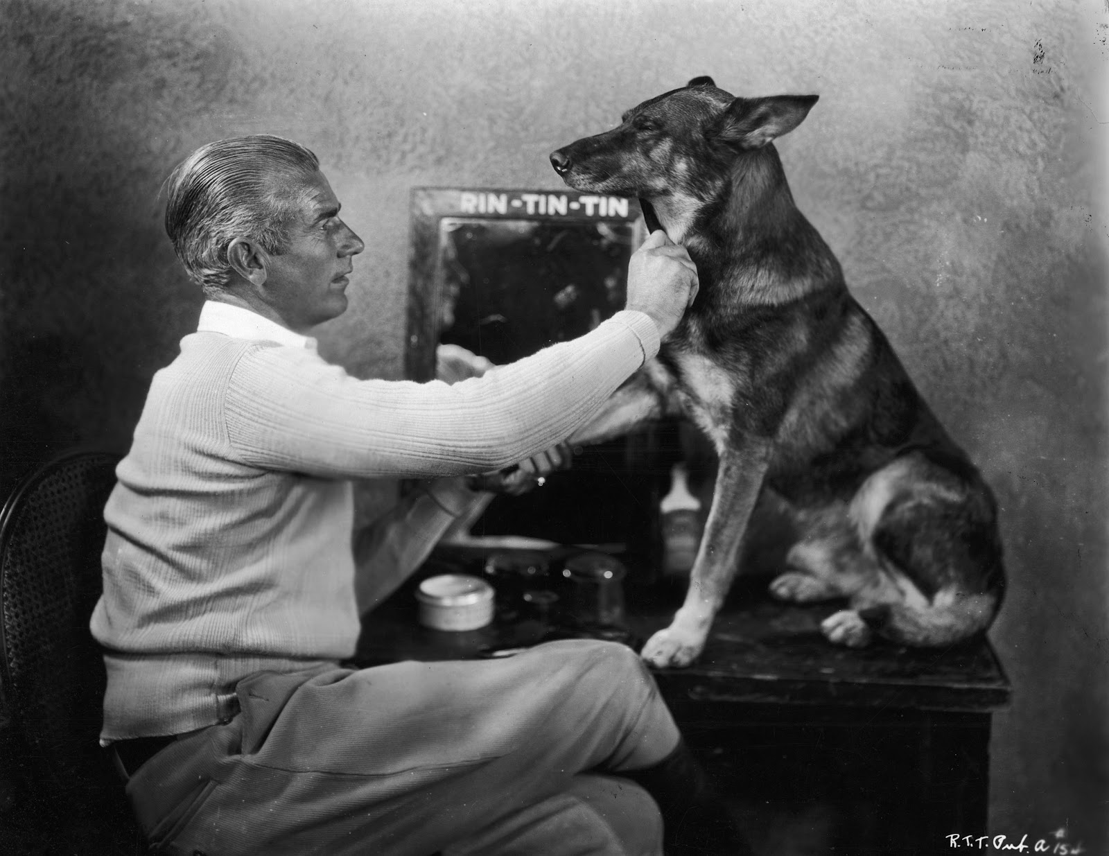 Check Out These Famous Dogs
