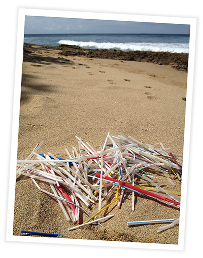 Typical Straw Waste on Beaches around the World