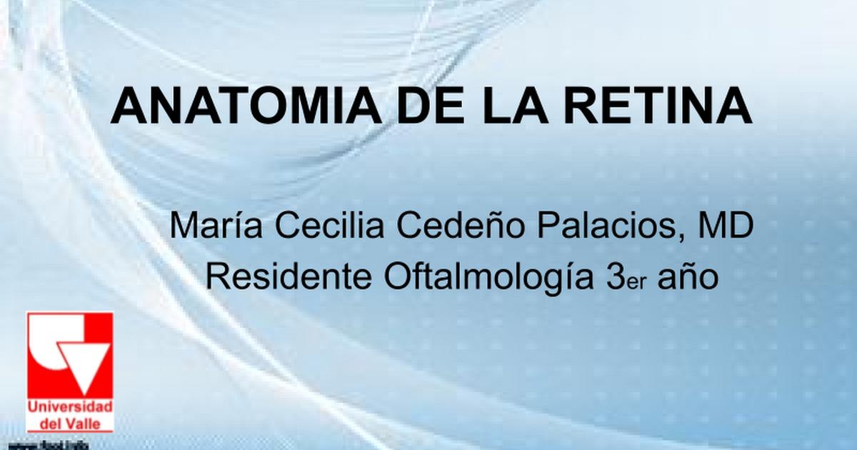 ANATOMIA DE LA RETINA 2011 - Google Slides