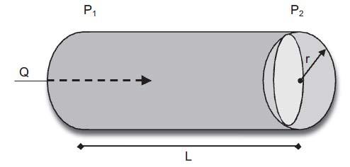 Schematic representation of Poiseuille's