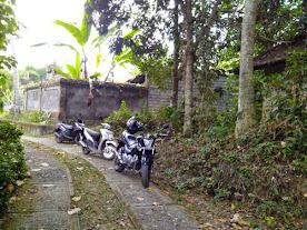Jual tanah di ubud pejeng 1000 m2, lokasi di sebelah villa Tugu