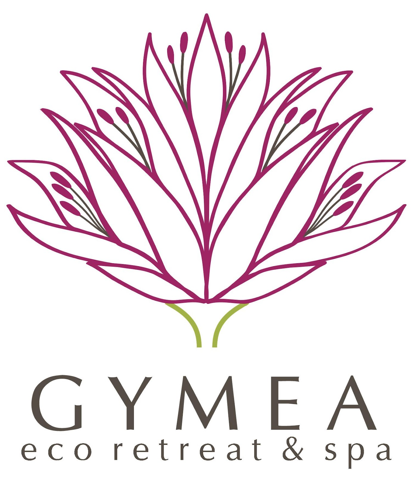 C:\Users\Stephen Armytage\Documents\My Dropbox\AA Gymea\Gymea Images\Logo\logo by Marius\printspot final versions\Gymea Lily head, stem & title.jpg