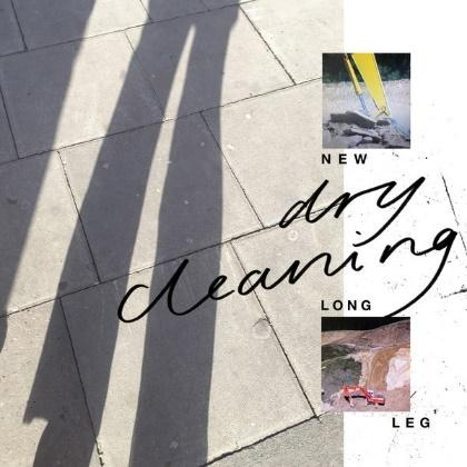 Dry Cleaning: New Long Leg Album Review   Pitchfork
