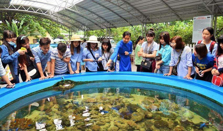 Thuê xe du lịch đi tham quan Viện Hải dương học Nha Trang