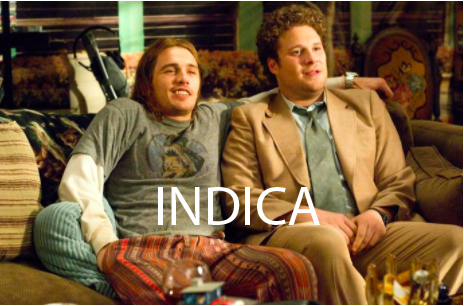 James Franco and Seth Rogen sitting couch locked from blazing a powerful indica in Pineapple Express.