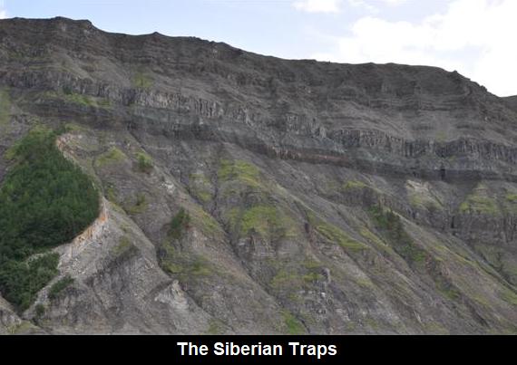 साइबेरियन ट्रैप्स