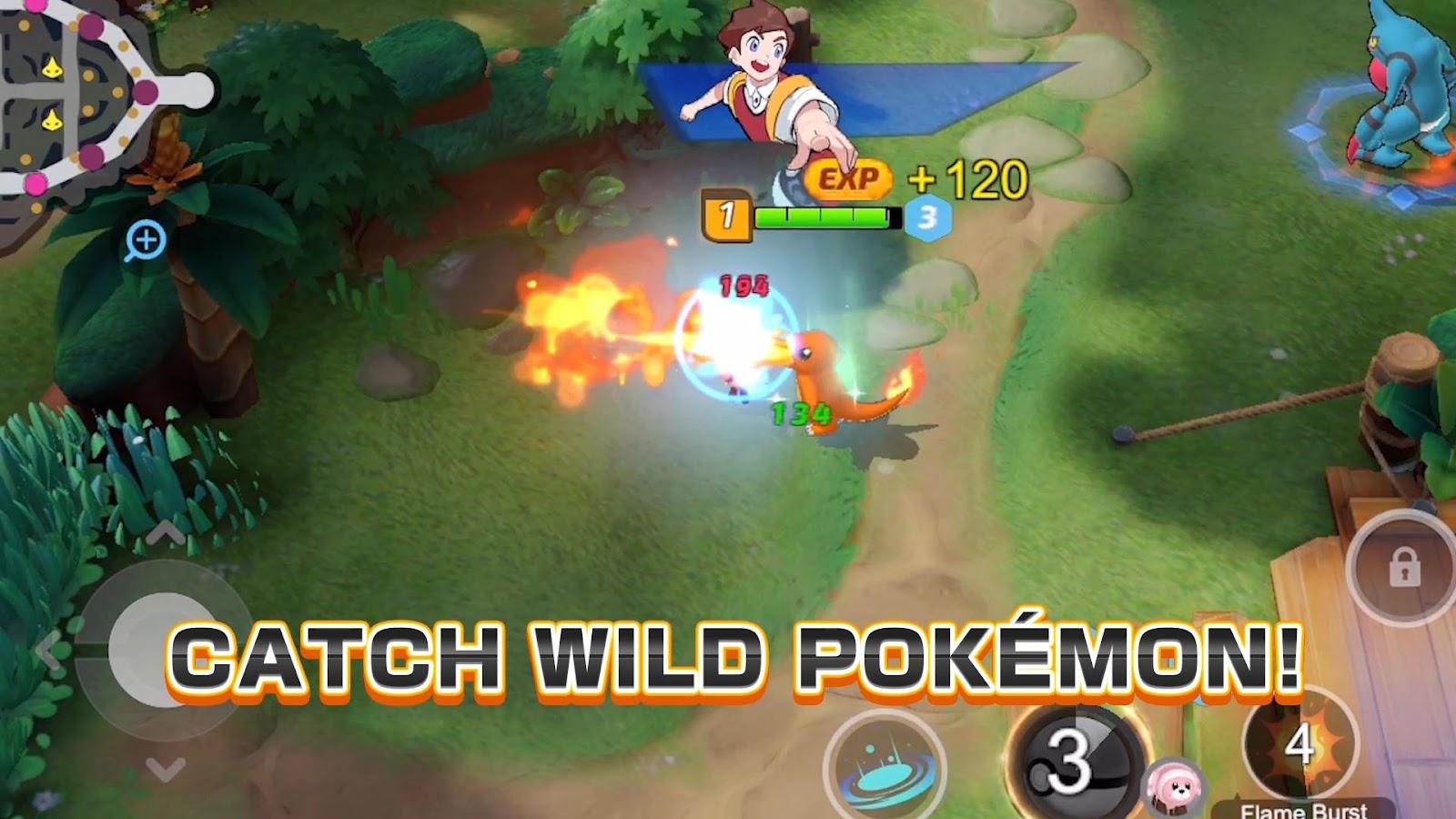 catch wild pokemon