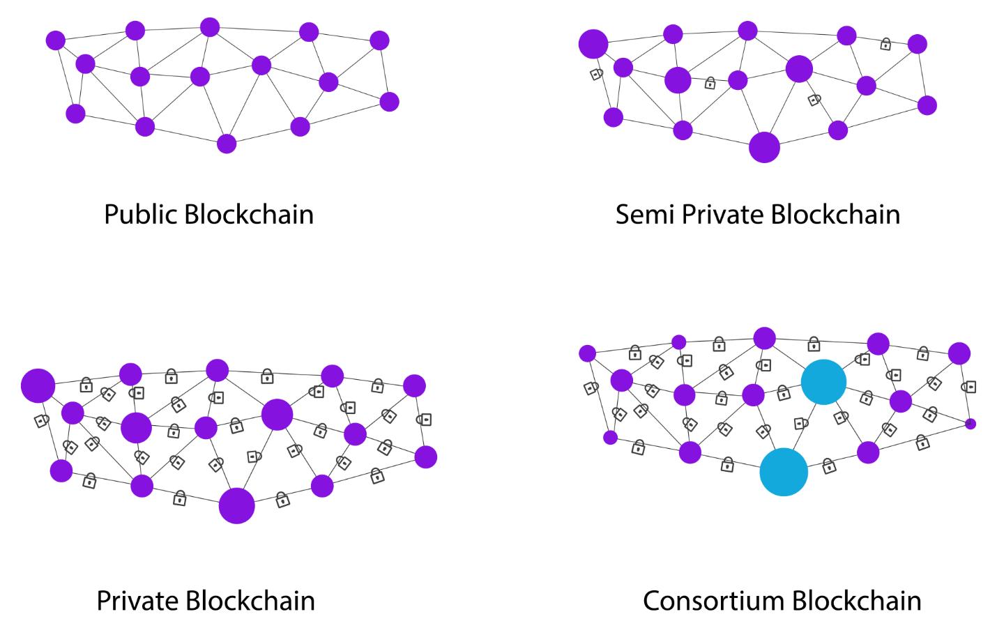 Blockchain network types