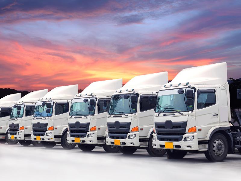 Vận chuyển hàng Đồng Nai đi Ninh Thuận: nhu cầu lớn, yêu cầu cao
