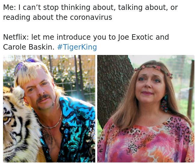 tiger king netflix memes