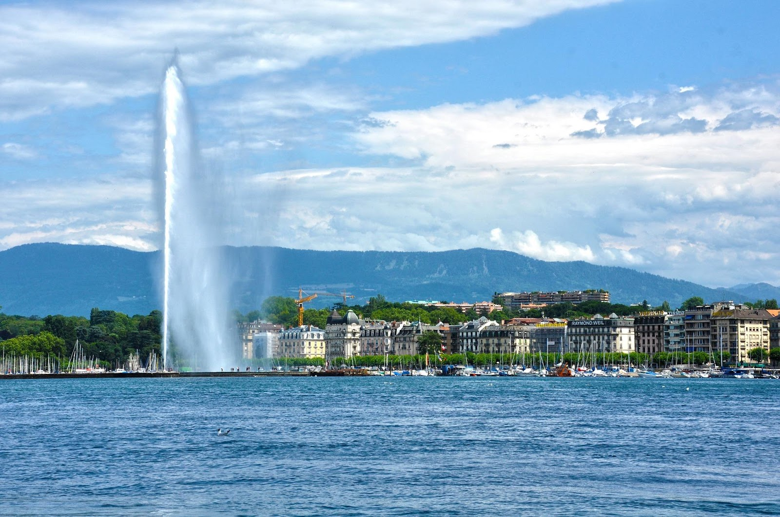 geneva switzerland city seen from lake clear day water fountain