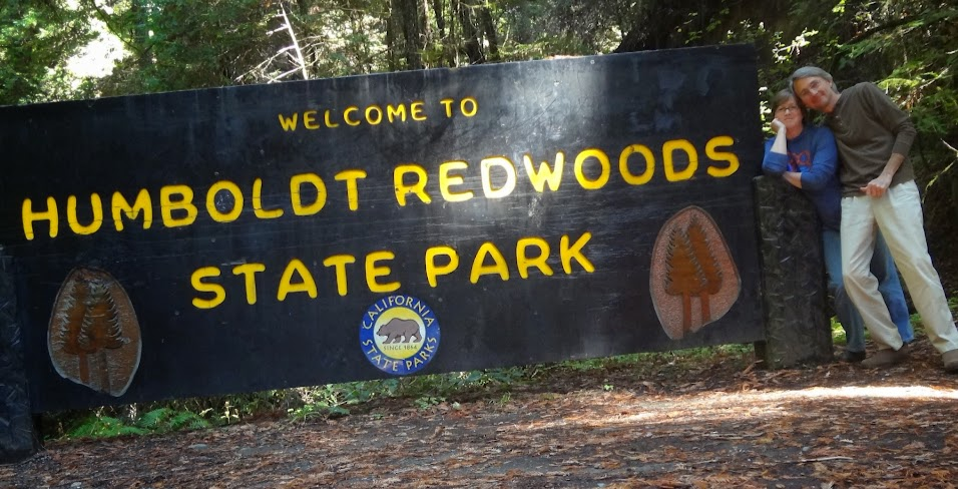 Humboldt Redwoods State Park CA