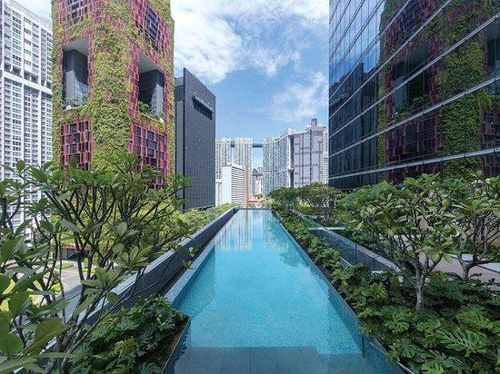 1) Sofitel Singapore City Centre-.jpg