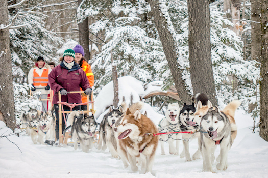 Looking for Winter Group Vacation Ideas?