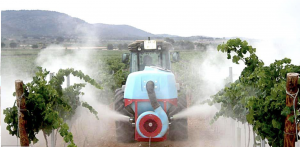 How are sulfur vine treatments applied?