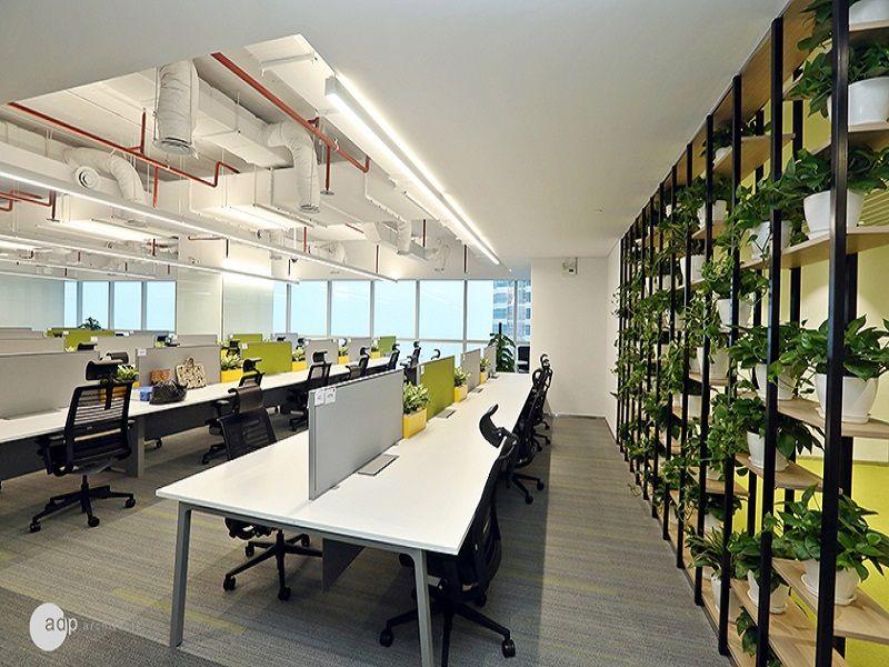 Một mảng cây xanh lớn trong văn phòng Huawei