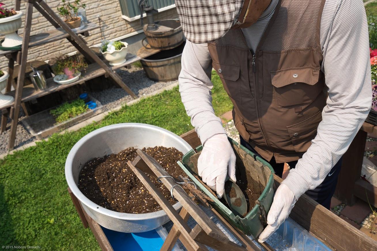 3.培養土をのせていく