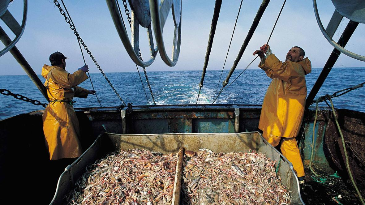 two fishermen on a fishing trawler with their catch