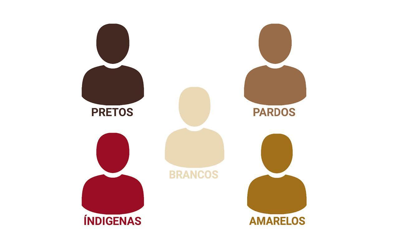 raças no brasil