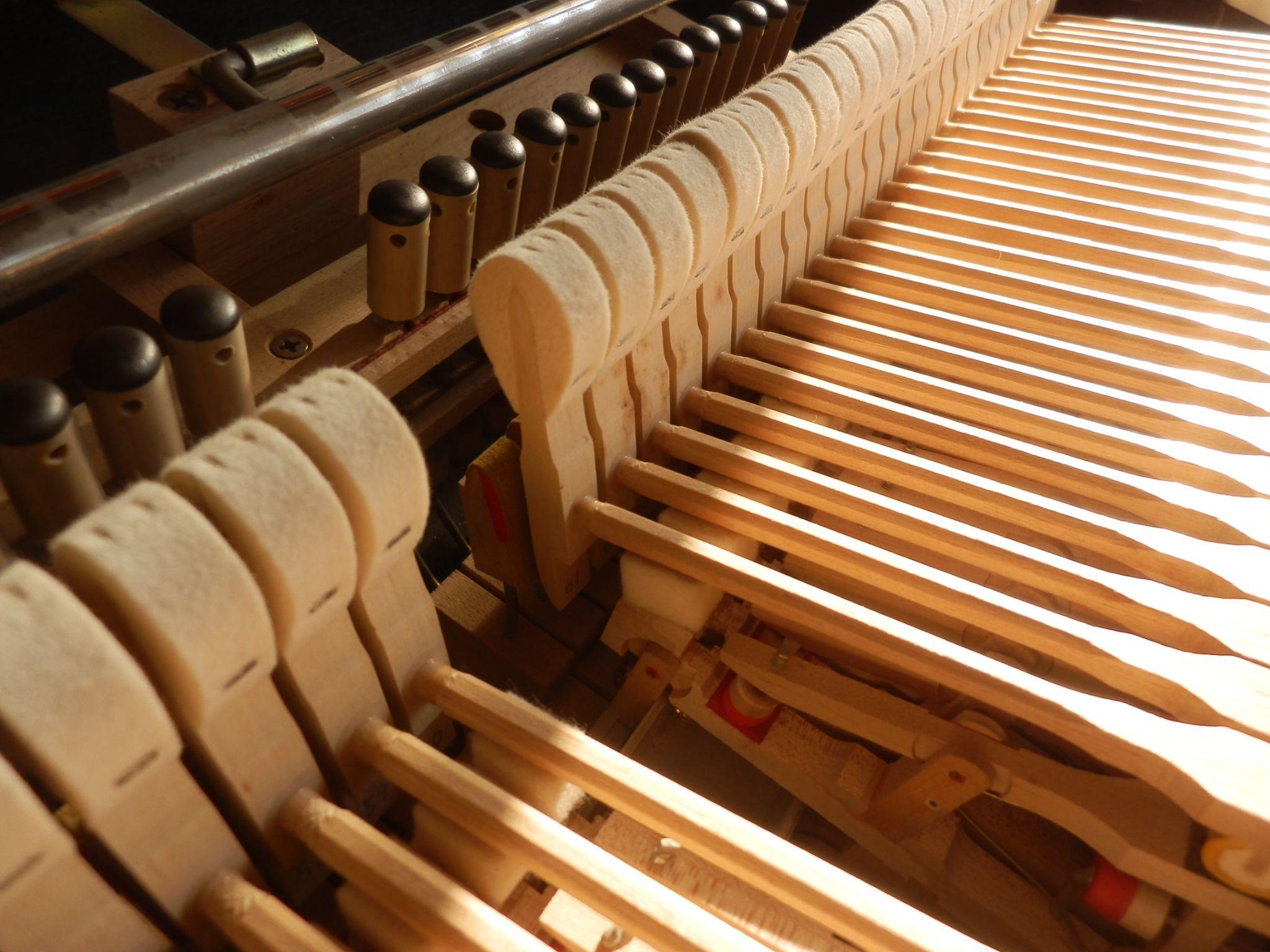 CP80 STUDIO MODEL wooden hammer