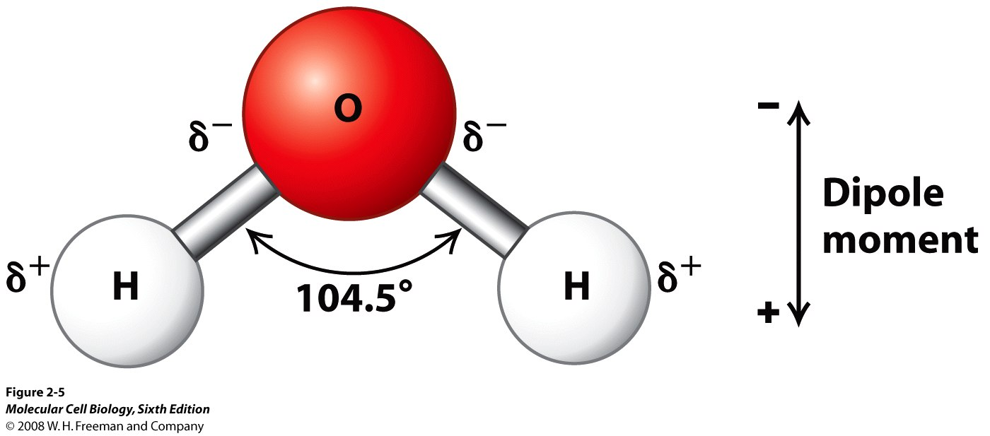 chapter 3 chemistry 101