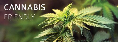 Cannabis Friendly Hotel in Mendocino | MacCallum House
