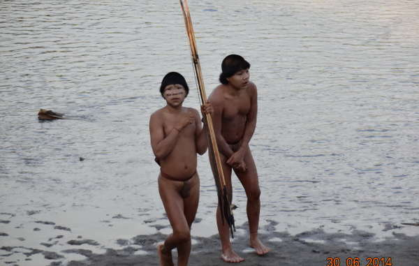 Uncontacted Indians in the Amazon rainforest made contact in June 2014 after their relatives were massacred and their houses set alight by outsiders.