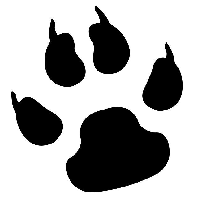 Лапы Печати, Pawprint, Собака