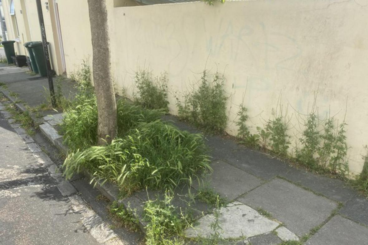Overgrown areas can prove hazardous to disabled people who may not be able to negotiate a clear path