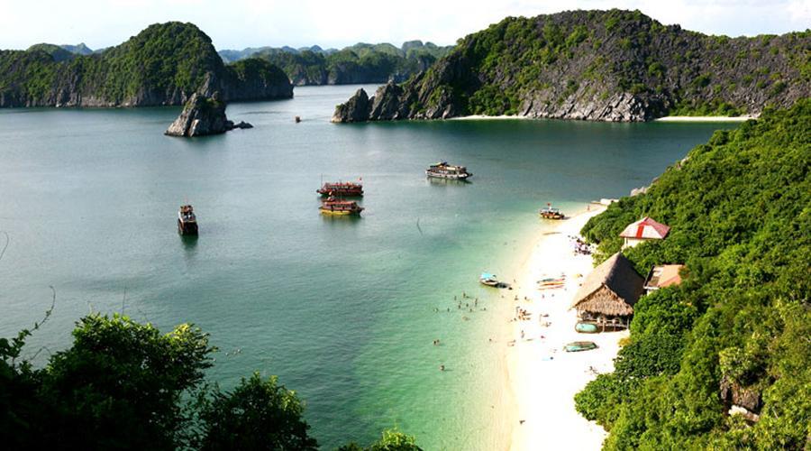 Hướng dẫn lịch trình du lịch Cát Bà từ Hà Nội tốt nhất