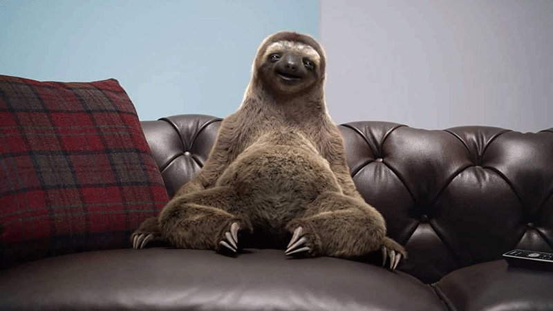 sloth-on-couch.png