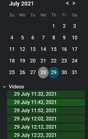 Historical view calendar with security monitoring highlights