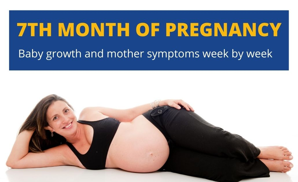 7th month of pregnancy
