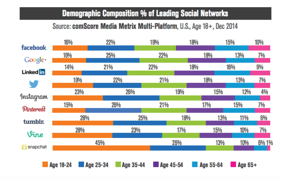 Demographic composition % of leading social networks