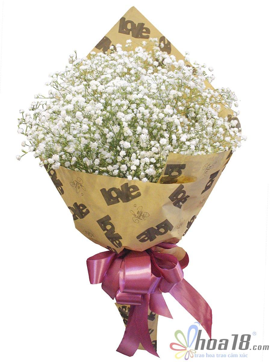 bó hoa bi đẹp