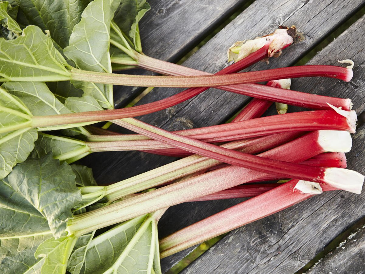 What Is Rhubarb and What Can You Do With It? | MyRecipes