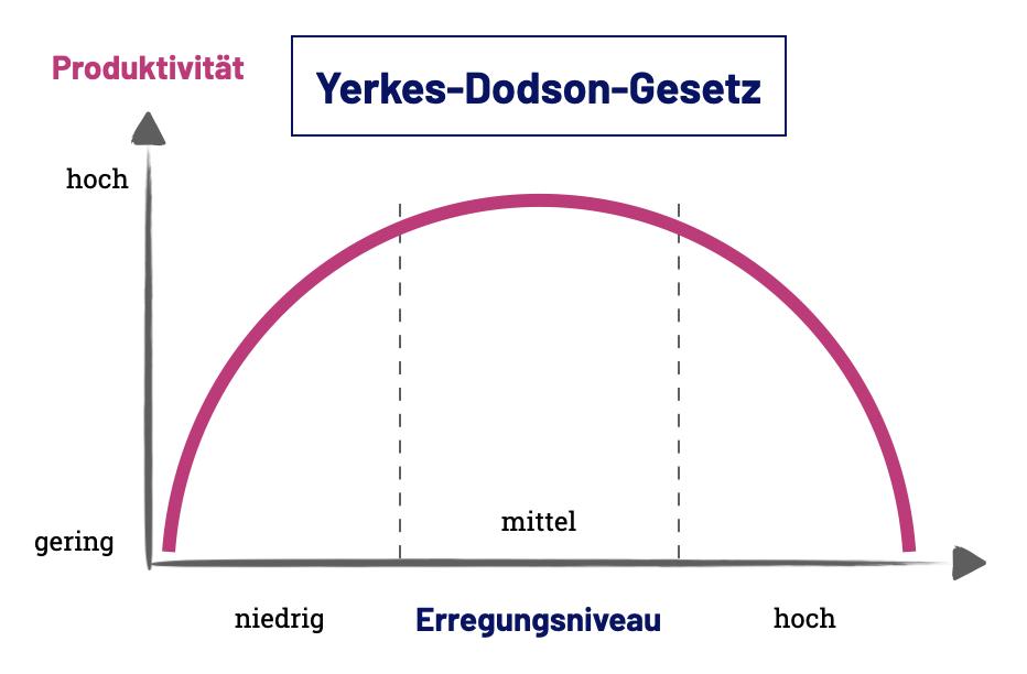 Das Yerkes-Dodson-Gesetz unterstellt eine positive Korrelation zwischen deiner Produktivität und deinem Erregungsniveau (engl. arousal)