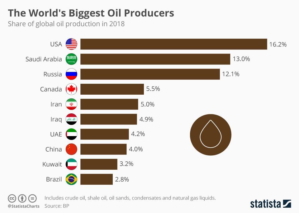 Risultato immagini per biggest crude producer countries 2019