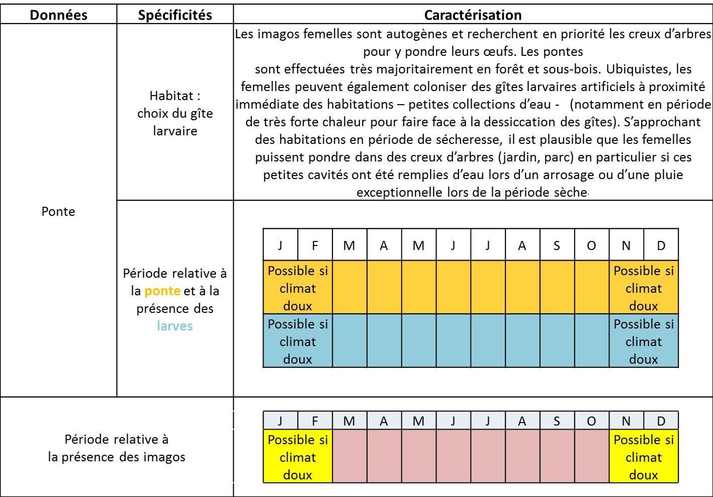Moustiques en alg rie anopheles anopheles plumbeus for Habitat rural en algerie pdf