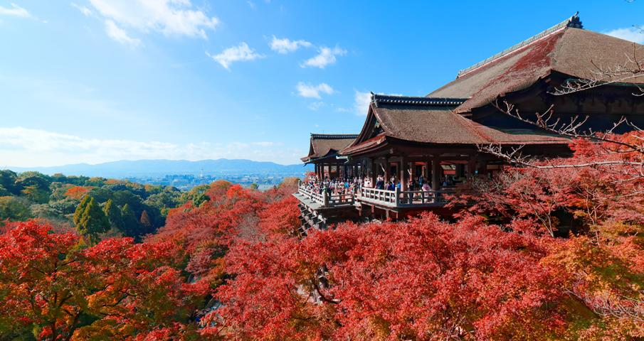 Image result for chùa Kiyomizu nhật bản