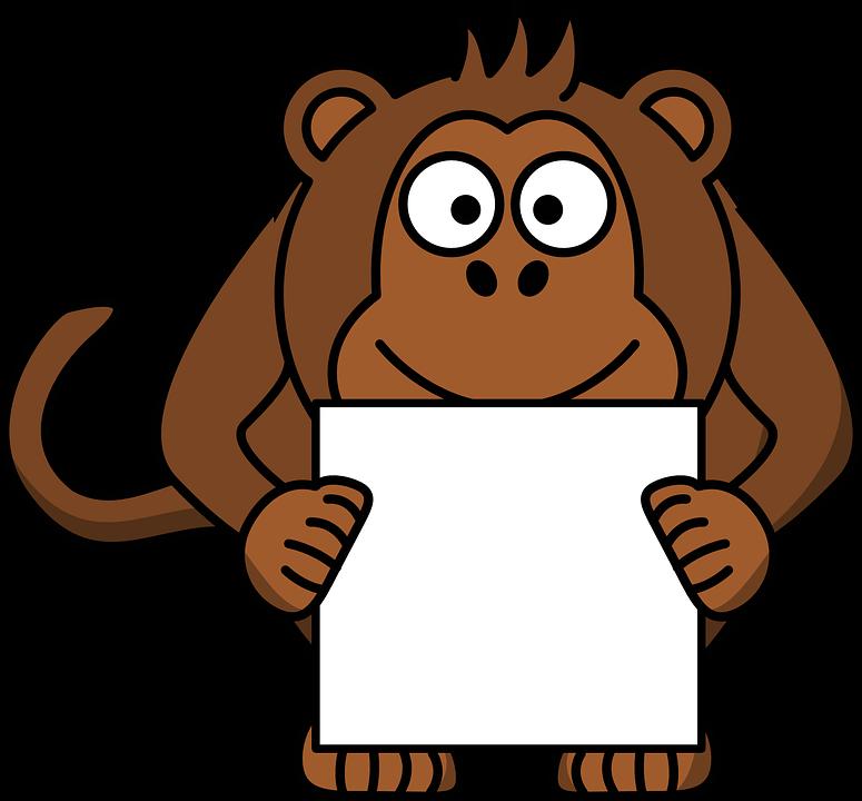 monkey-161227_960_720.png