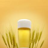 BeerGrain_1500.jpg