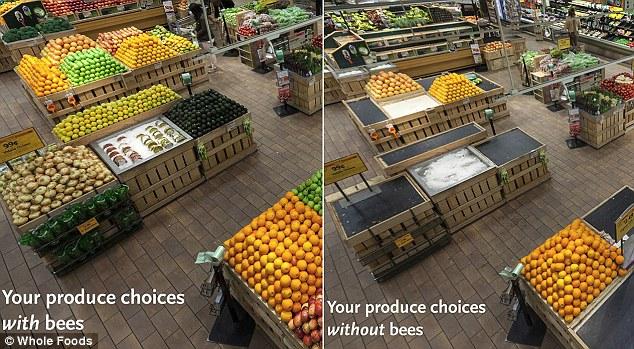 porovnanie produktov, ak by včely vymreli.