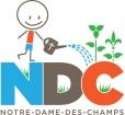 nddc.jpg