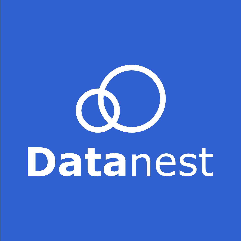 Datanest ai, salah satu startup yang telah menggunakan teknologi ai.